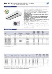 Dam DX LG 1_1 y VRF